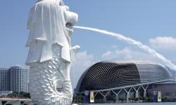 Chuyển phát nhanh đi Singapore